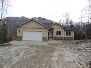 24244 Mount Eklutna Drive, Chugiak, AK 99567 (MLS #17-6415) :: Northern Edge Real Estate, LLC