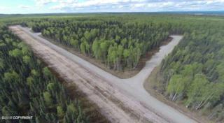 29454 S Wingtie Street, Talkeetna, AK 99676 (MLS #17-6794) :: Foundations Real Estate Experts