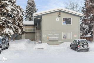 160 Grand Larry Street #D7, Anchorage, AK 99504 (MLS #17-716) :: Team Dimmick