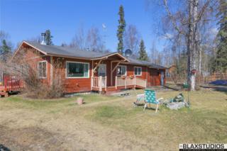 4010 N Greatland Circle, Wasilla, AK 99623 (MLS #17-7182) :: Foundations Real Estate Experts