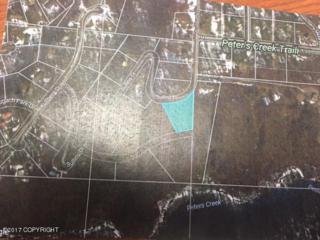 L6 B4 Sullins Drive, Chugiak, AK 99567 (MLS #17-7293) :: Core Real Estate Group