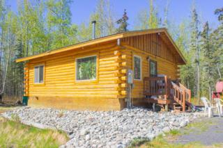 13168 N Kings Court, Sutton, AK 99674 (MLS #17-7475) :: Foundations Real Estate Experts