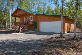 12561 N Pettis Drive, Willow, AK 99688 (MLS #17-7642) :: Foundations Real Estate Experts
