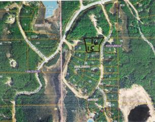 11376 N Seclusion Shores Drive, Willow, AK 99688 (MLS #17-7651) :: Foundations Real Estate Experts