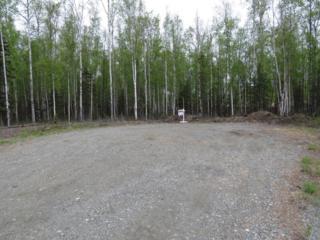 6601 S Borigo Circle, Wasilla, AK 99654 (MLS #17-7687) :: Team Dimmick