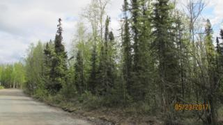11236 W Airolo Drive, Big Lake, AK 99652 (MLS #17-7700) :: Core Real Estate Group