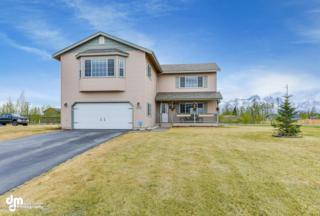 13590 E Field Lane, Palmer, AK 99645 (MLS #17-7769) :: Foundations Real Estate Experts