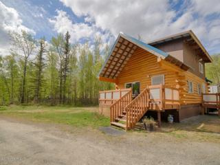 11436 Eska Street, Sutton, AK 99674 (MLS #17-7806) :: Foundations Real Estate Experts