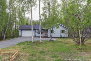 6420 S Settlers Bay Drive, Wasilla, AK 99654 (MLS #17-7818) :: Team Dimmick