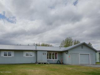 740 Violet Circle, Palmer, AK 99645 (MLS #17-7819) :: Foundations Real Estate Experts