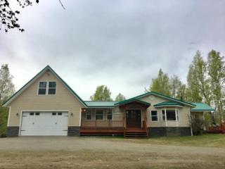 11001 E Larose Road, Palmer, AK 99645 (MLS #17-7835) :: Core Real Estate Group