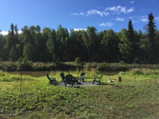 50342 S Muir Road, Willow, AK 99688 (MLS #17-7892) :: Foundations Real Estate Experts