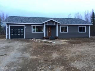 14736 W Rocky Lake Drive, Big Lake, AK 99652 (MLS #17-7969) :: Core Real Estate Group