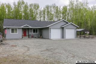 10018 W Trimotor Street, Wasilla, AK 99623 (MLS #17-8021) :: Northern Edge Real Estate, LLC