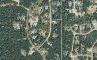 4410 S Phiie Drive, Wasilla, AK 99623 (MLS #17-8028) :: Northern Edge Real Estate, LLC