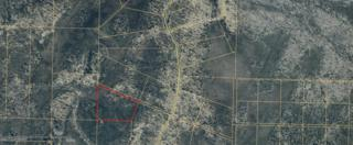 D30 Alaskan Wildwood Ranch, Nikolaevsk, AK 99556 (MLS #17-8054) :: Team Dimmick