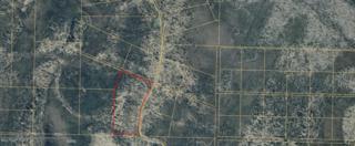 D31 Alaskan Wildwood Ranch, Nikolaevsk, AK 99556 (MLS #17-8055) :: Team Dimmick