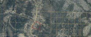 D32 Alaskan Wildwood Ranch, Nikolaevsk, AK 99556 (MLS #17-8056) :: Team Dimmick
