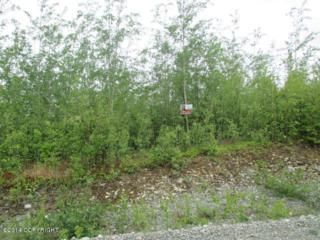 10734 W Backus Drive, Wasilla, AK 99623 (MLS #17-8064) :: Foundations Real Estate Experts