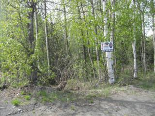 35133 Kenai Spur Highway, Soldotna, AK 99669 (MLS #17-8108) :: Northern Edge Real Estate, LLC
