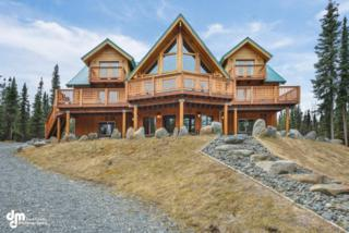 37920 Sara Street, Soldotna, AK 99669 (MLS #17-8131) :: Foundations Real Estate Experts