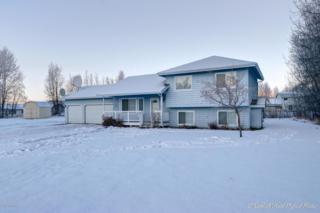 11701 E Jenny Circle, Palmer, AK 99645 (MLS #17-8181) :: Core Real Estate Group