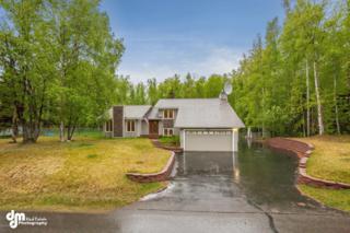 27811 Raven Court Court, Chugiak, AK 99567 (MLS #17-8264) :: Core Real Estate Group