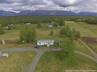 12780 E Archie Road, Palmer, AK 99645 (MLS #17-8265) :: Core Real Estate Group