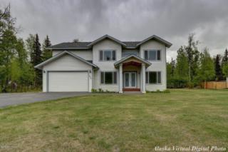 3266 E Wanamingo Drive, Wasilla, AK 99654 (MLS #17-8412) :: Core Real Estate Group