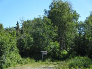 L4 E 140th Avenue, Anchorage, AK 99516 (MLS #17-8434) :: Core Real Estate Group
