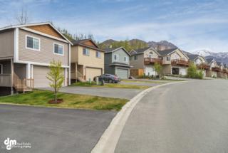 20603 Mountain Vista Drive, Eagle River, AK 99577 (MLS #17-8435) :: Core Real Estate Group