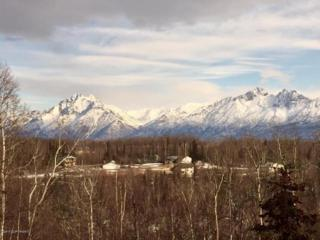 2151 S Bay View Drive, Wasilla, AK 99654 (MLS #17-8440) :: Core Real Estate Group