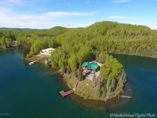 6425 S Becky Lane, Big Lake, AK 99652 (MLS #17-8448) :: Core Real Estate Group
