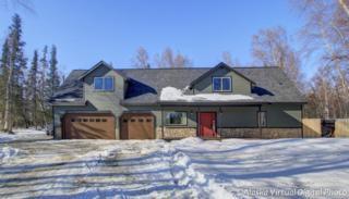 10060 N Buffalo Mine Moose Creek Road, Palmer, AK 99645 (MLS #17-3519) :: Team Dimmick