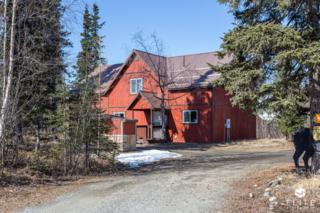 8819 W O'brien Creek Drive, Wasilla, AK 99623 (MLS #17-5085) :: RMG Real Estate Experts