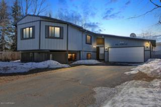 1136 Ril Circle, Anchorage, AK 99504 (MLS #17-5955) :: RMG Real Estate Experts