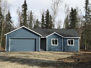8989 W John Street, Wasilla, AK 99654 (MLS #17-6091) :: RMG Real Estate Experts