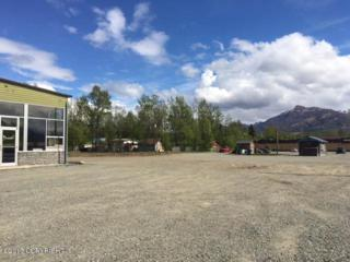 175 W Arctic, Palmer, AK 99645 (MLS #17-7831) :: Foundations Real Estate Experts