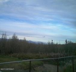9853 Hollywood Road, Wasilla, AK 99623 (MLS #17-7883) :: Foundations Real Estate Experts