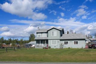 910 S Idaho Peak Circle, Palmer, AK 99645 (MLS #17-8141) :: Core Real Estate Group
