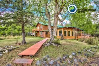 5305 N Heidi Drive, Palmer, AK 99645 (MLS #17-8362) :: Core Real Estate Group