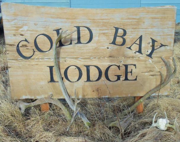 1000 Dias, Cold Bay, AK 99571 (MLS #15-4760) :: Real Estate eXchange