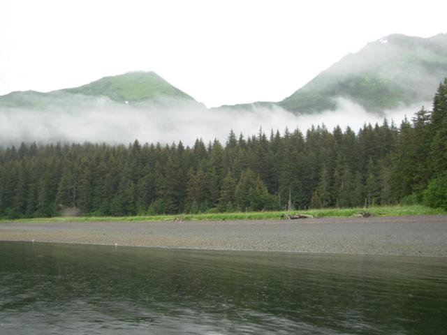 L2 Silent Shores, Port Graham, AK 99603 (MLS #16-11055) :: RMG Real Estate Network | Keller Williams Realty Alaska Group