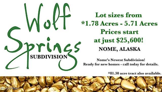 L3 B2 Wolf Springs, Nome, AK 99762 (MLS #16-17551) :: RMG Real Estate Network | Keller Williams Realty Alaska Group