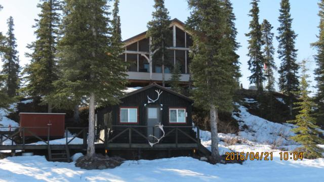 L2 No Road, Glennallen, AK 99588 (MLS #16-6165) :: Channer Realty Group