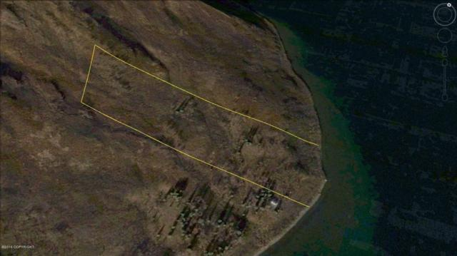 L3 B6 Snake Lake, Dillingham, AK 99576 (MLS #16-8022) :: Northern Edge Real Estate, LLC