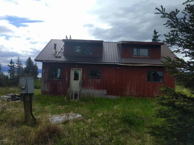 54955 W Finn Avenue, Homer, AK 99603 (MLS #17-10004) :: RMG Real Estate Experts