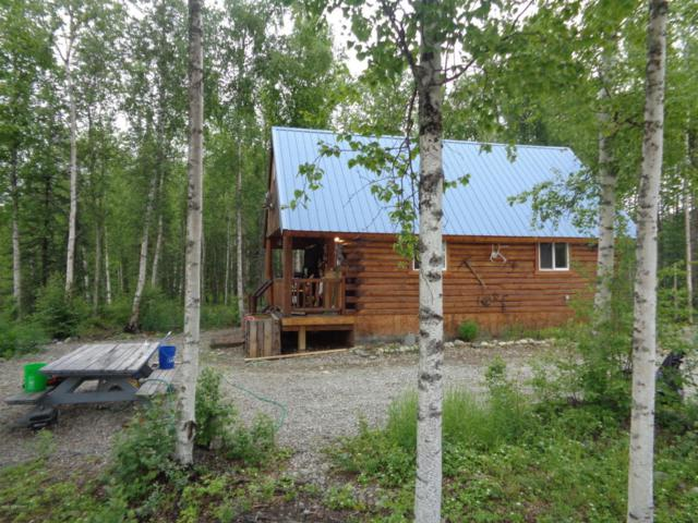 4305 W Artist View Circle, Wasilla, AK 99623 (MLS #17-10196) :: Northern Edge Real Estate, LLC
