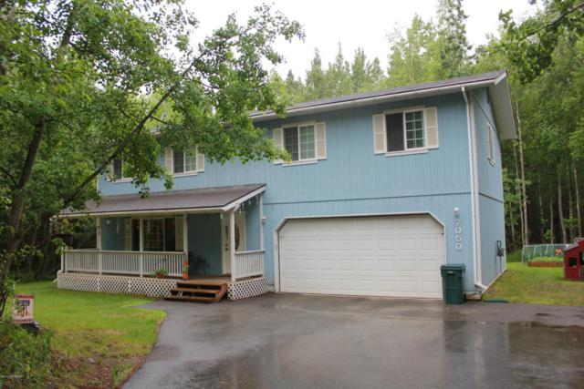 7050 W Borigo Drive, Wasilla, AK 99654 (MLS #17-10274) :: Northern Edge Real Estate, LLC