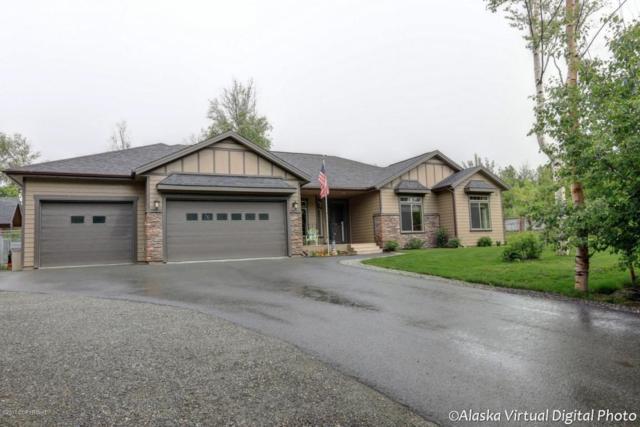 3210 N Snowgoose Road, Palmer, AK 99645 (MLS #17-10278) :: Northern Edge Real Estate, LLC
